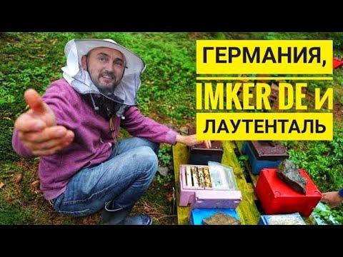 Пчеловодство Германии, поездка к Imker DE,  облетник Лаутенталь.