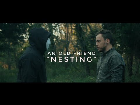 """An Old Friend - """"Nesting"""""""