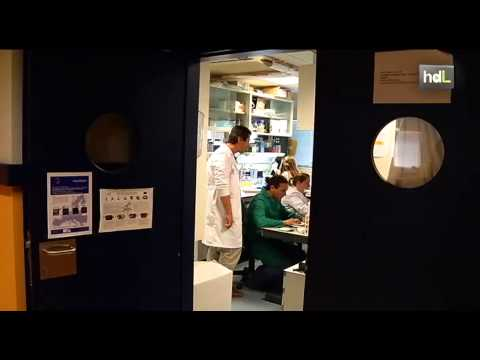 Científicos jiennenses abren la puerta al tratamiento de cardiopatías causantes de muerte súbita