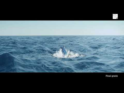 CGI Vfx Breakdown HD: Making of Kon-tiki by ILP