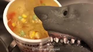 Shark Puppet Makes Some Asian Cuisine
