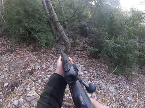 Lance de caza ante un jabalí