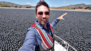 Así es un Lago de 100,000,000 de Pelotas!!! / COSAS GRANDES #1 Nueva Serie