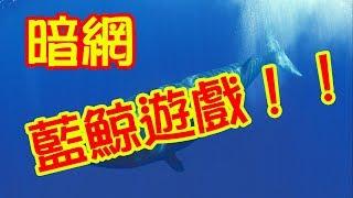 體驗《暗網》俄羅斯藍鯨遊戲,深入報導~  Russian Blue Whale Game~deep web