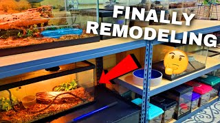 Remodeling My ANIMAL ROOM (Upgrades, Plans, & More) 🐾 | Tomas Pasie