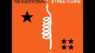 Walter - Long Shadow (Joe Strummer and The Mescaleros cover)