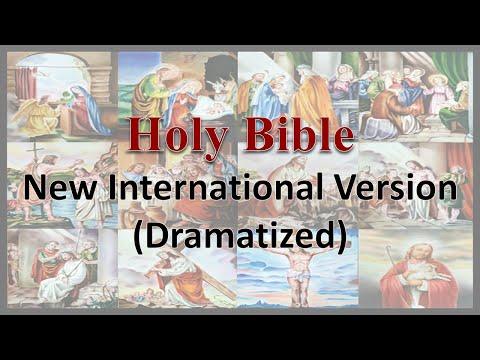 AudioBible NIV 62 1John Dramatized New International Version High Quality