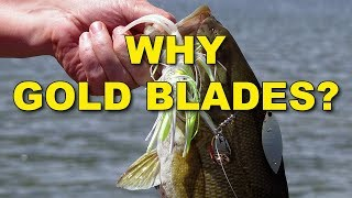 Why Using Gold-Bladed Spinnerbaits is Best | Bass Fishing