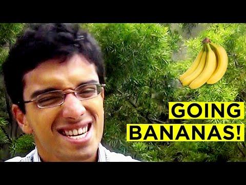 Going Bananas Prank