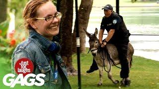bromas El policía y el burro