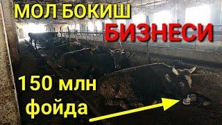 150 млн Даромад МОЛ БОКИШ БИЗНЕСИ
