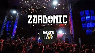Beats for Love 2017 Zardonic - Feuer frei 4K quality