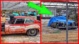 Abandoned 30 vintage Jaguars. Abandoned Jaguar E-type.