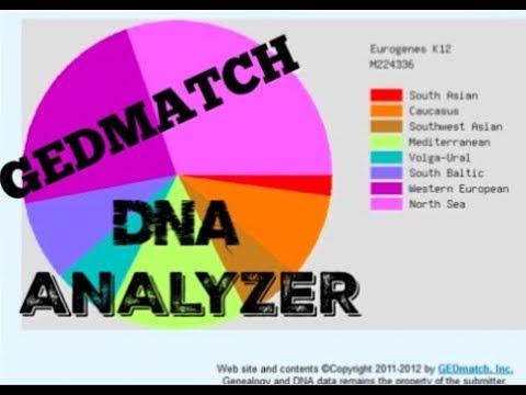 Gedmatch - новый тренд смотреть онлайн на сайте Trendovi ru