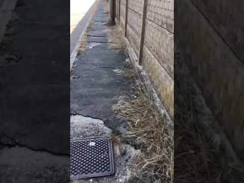 La zona Frati a Legnano nel video di un lettore che lamenta situazioni di degrado