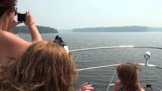 Заказать прогулку на яхте по Клязьминскому водохранилищу