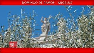 Papa Francisco - Celebração do Domingo de Ramos - Oração do Angelus 2019-04-14