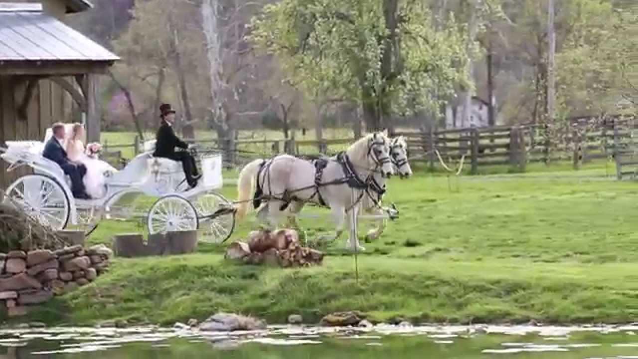 Wedding: Taylor & Isaiah