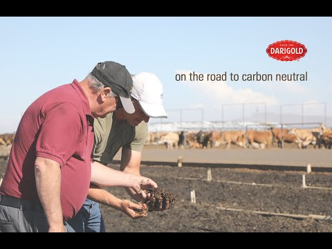 On The Road to Carbon Neutral