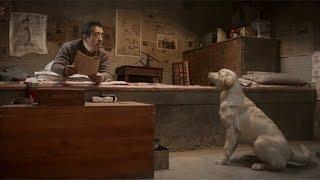 【宇哥】老汉捡回一只狗狗,发现它竟能陪人聊天,还会拉车!《忠爱无言》