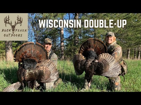, title : 'TWO TURKEYS Down in Wisconsin (Father and Son DOUBLE UP!!)