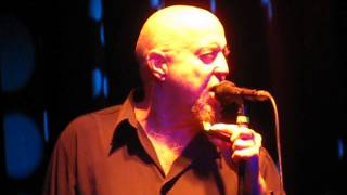 Fabulous Thunderbirds - Holland oct 2013 Too much water under the bridge