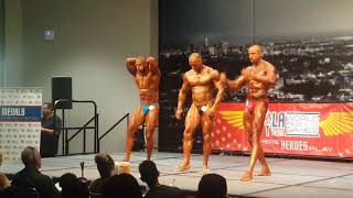 Wpfg 2017 Los Angeles bodybuilding between 30 years and 40 years and over 1.79m