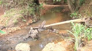 O nível do Rio areado está bem abaixo do normal para o período. O rio ainda sofre com o assoreamento. Os moradores temem que essa situação possa ocasionar a falta de água.