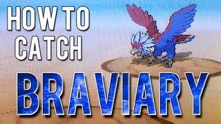 Braviary  - (Pokémon) - How to Catch - Braviary - Pokemon White 2