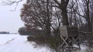 preview picture of video 'Wandertag Leipzig Süd - Störmthal Oberholz ~ Januar 2013 ~ HD ~ Schwarzes Wandern'