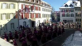 preview picture of video 'Internationaler Fastnachts-Umzug Frauenfeld'