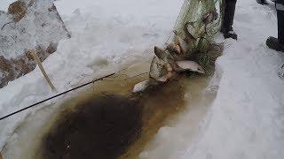 Все для рыбалки и охоты тюмень 2020