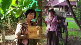 Cỏ Xót Xa Đưa _ Ca si :Quang Dũng