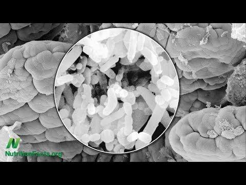 A pinworms öngyógyítása