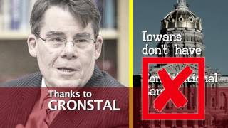 Tell Senator Mike Gronstal to Apologize for Attacking Your Gun Rights!