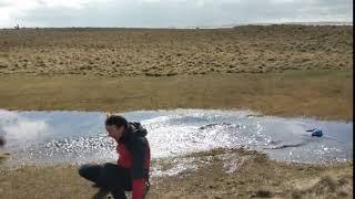 faze tari vrea sa sara peste apa