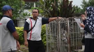 BMKG  Inspeksi Pos Penakar Hujan Kerjasama 2016