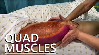 How to Massage the Quadriceps
