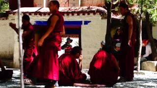 Día 258: Monasterios y budas