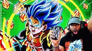 GOGETA BLUE & BROLY MEGA HYPE! Dragon Ball Z Dokkan Battle Global DBZ Summons!