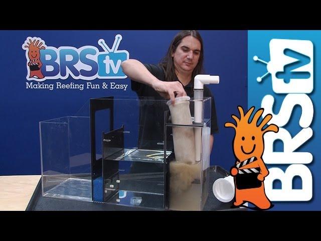 Using Filter Socks in Your Reef Tank - EP 4: Saltwater Aquarium Maintenance