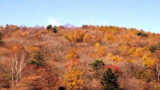 「井戸湿原」紅葉前日光穴場紅葉スポットinKanuma