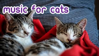 Calming Music for Cats - Stress, Anxiety and Boredom Cure!
