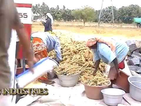 Multi Crop Thresher with conveyor