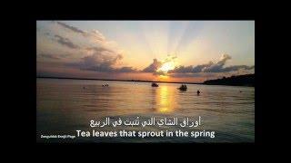 اجمل أغنية تركية مترجمة beautiful Turkish song translated