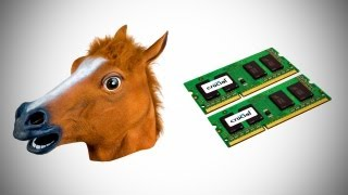 Horse Heads & RAM Upgrades?! (Deal Therapy) thumbnail