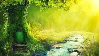 Relaxing Music 24/7, Reiki Music, Meditation, Healing, Zen, Spa, Yoga, Study, Sleep, Calm Music