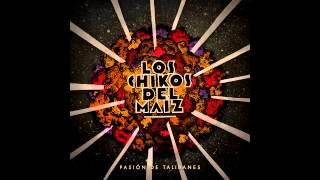 Busco Algún Lugar (Audio) - Los Chikos del Maíz  (Video)