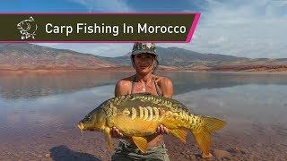 Carp Fishing In Morocco