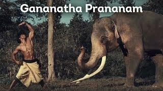 Gananatha Prananam (Elephant Salutation) | Vidyut Jammwal | Chuck Russell | Junglee